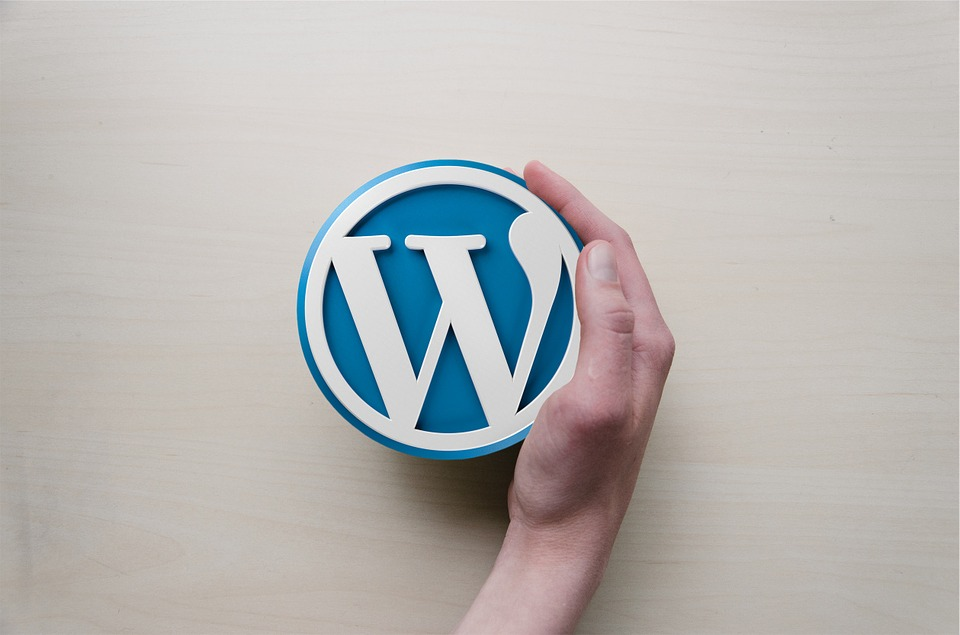 Wordpress is the worlds leading Content Management System